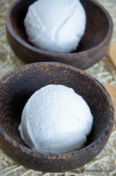 tropical coconut ice cream