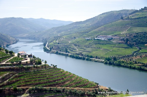 douro wine valley
