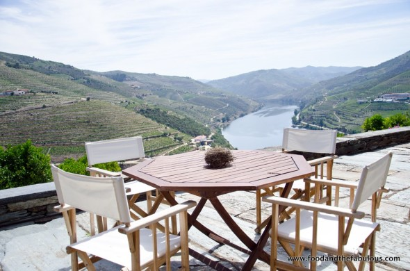 wine tasting douro valley