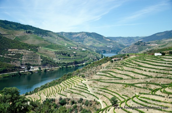 view from quinta do nova