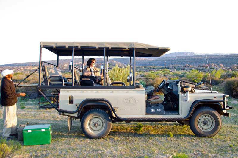 game drive bushmans kloof