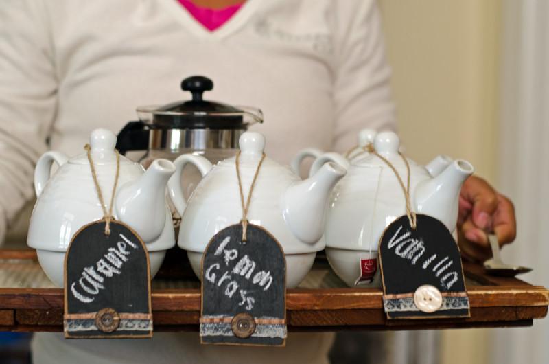 rooibos tea tasting
