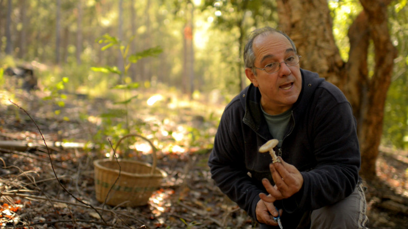 Gary Goldman aka The Mushroom Hunter