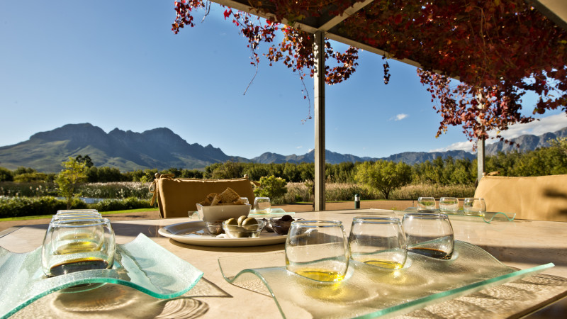 Morgenster - from tasting room verandah
