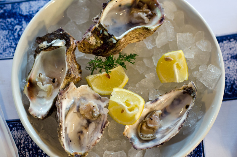wild oysters at 34 South