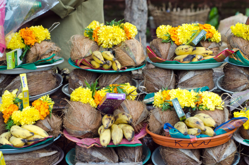 cocnuts at temple Goa