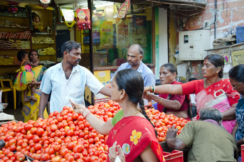 tomatoes Madras market