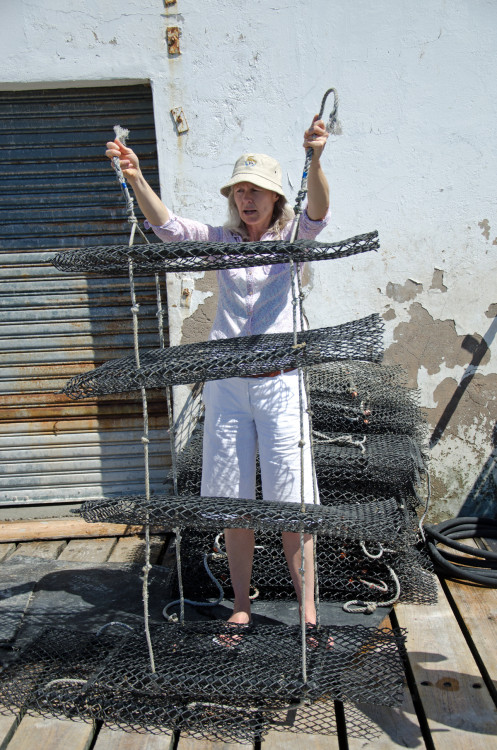 Sue Jackson holds oyster baskets in Saldanha Bay