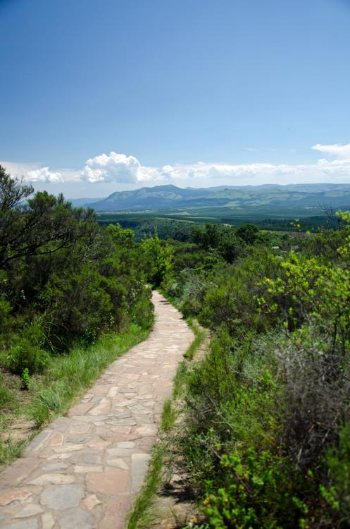 Scenery in Mpumalanga