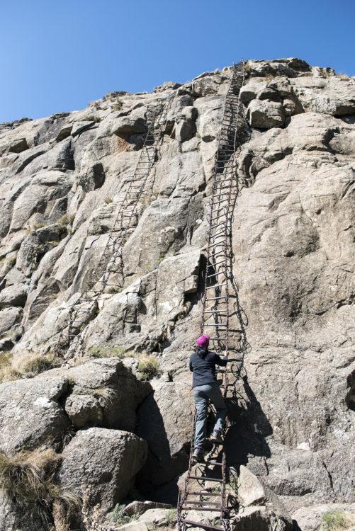 Amphitheatre ladders