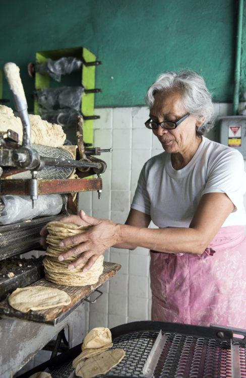 TortillaVendor1