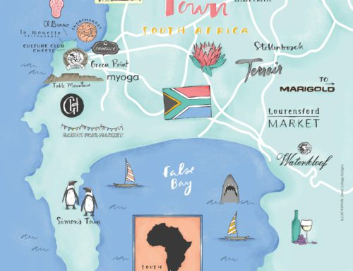 A Cheese Excursion Through Cape Town & Surrounds